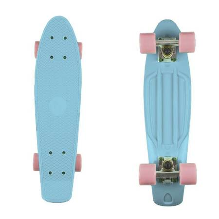 FISH SKATEBOARDS Summer Vibes 2 skateboard